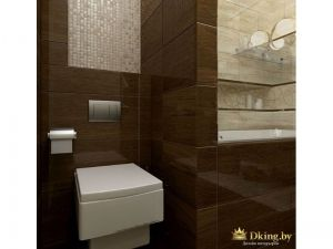Коричневый туалет