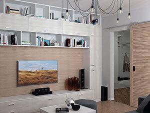 модуль для хранения в гостиной двушки
